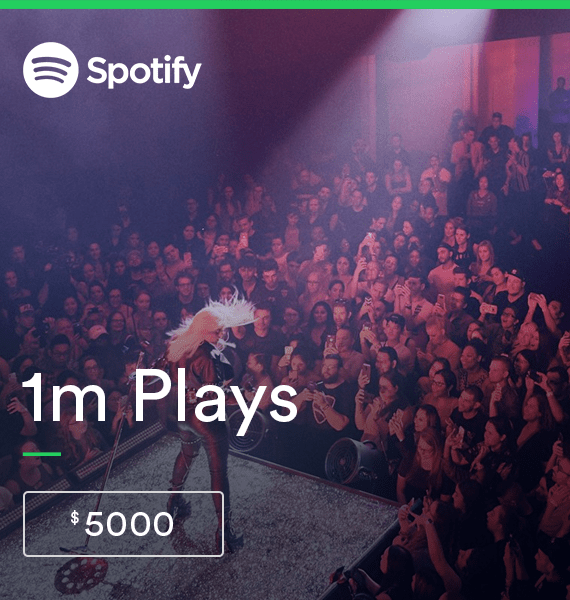 By 1,000,000 Spotify Streams - High Quality Service | PRandPromo
