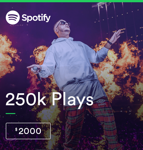 Buy 250,000 Spotify Streams - High Quality Service | PRandPromo
