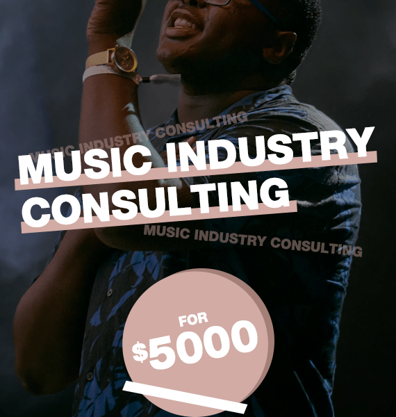 Professional Music Industry Consulting - PRandPromo